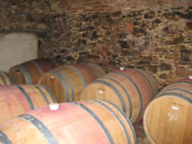 bodegas of spain on a bike tour