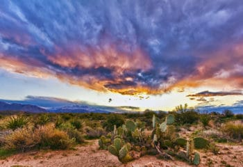 sonoran_sunrise_by_rubiconshoe-d4ls8p8