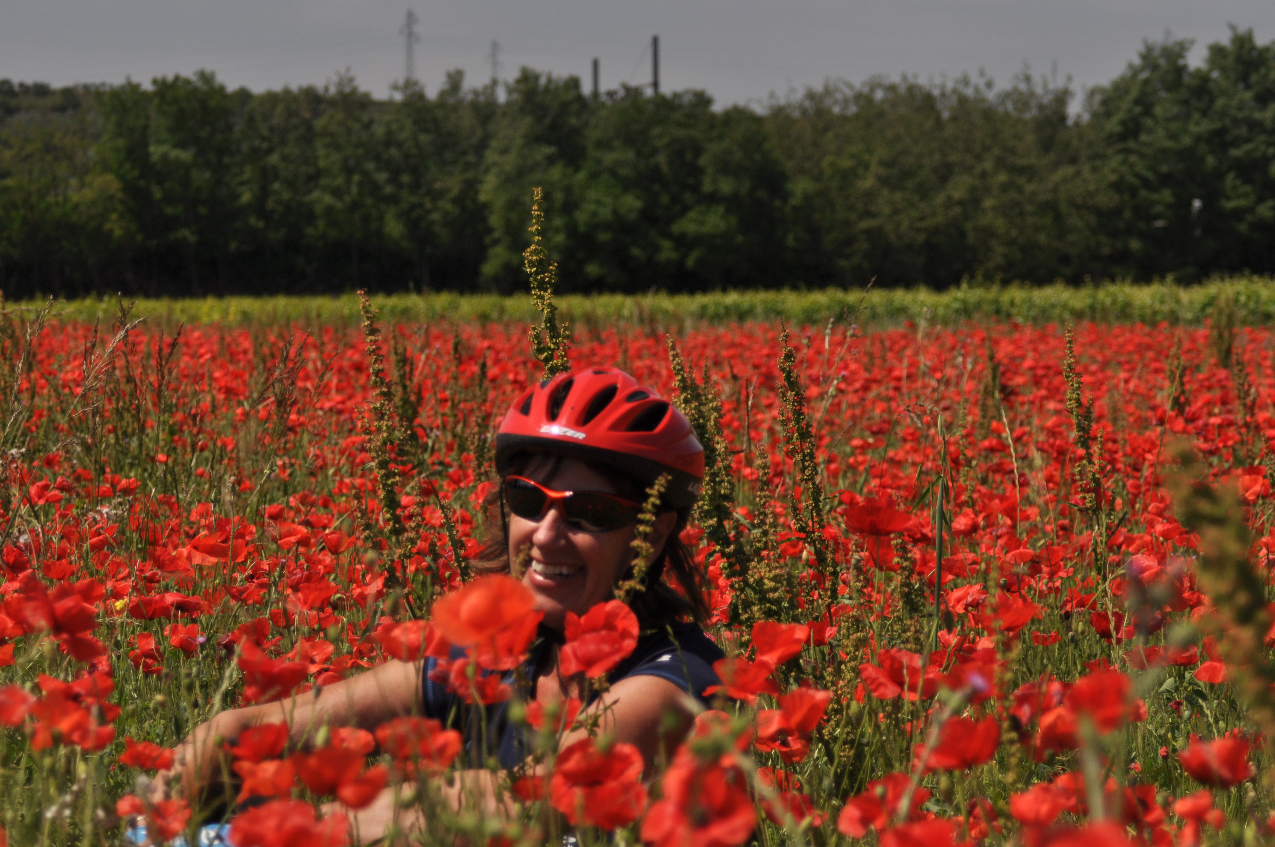 Tuscany self guided cycling tour