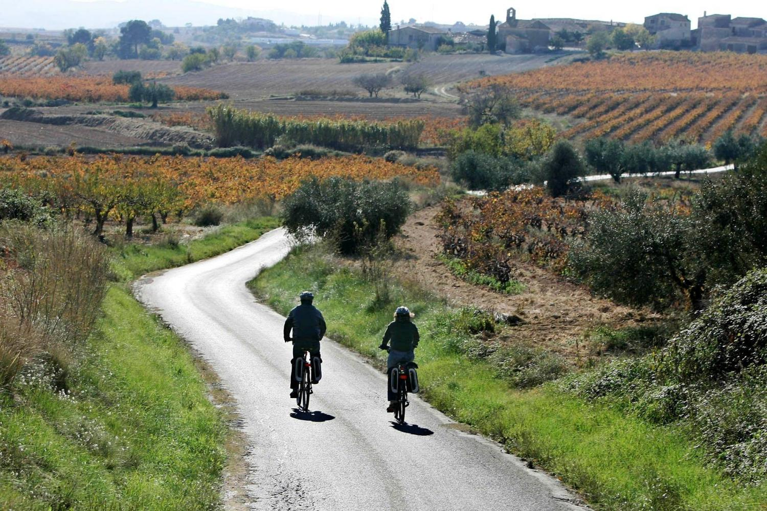Wine cycling through Spain