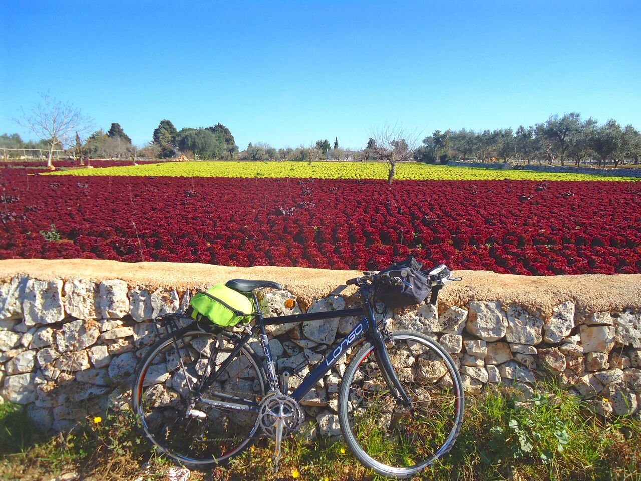 Scenic stops along the way, as you make your way through Puglia