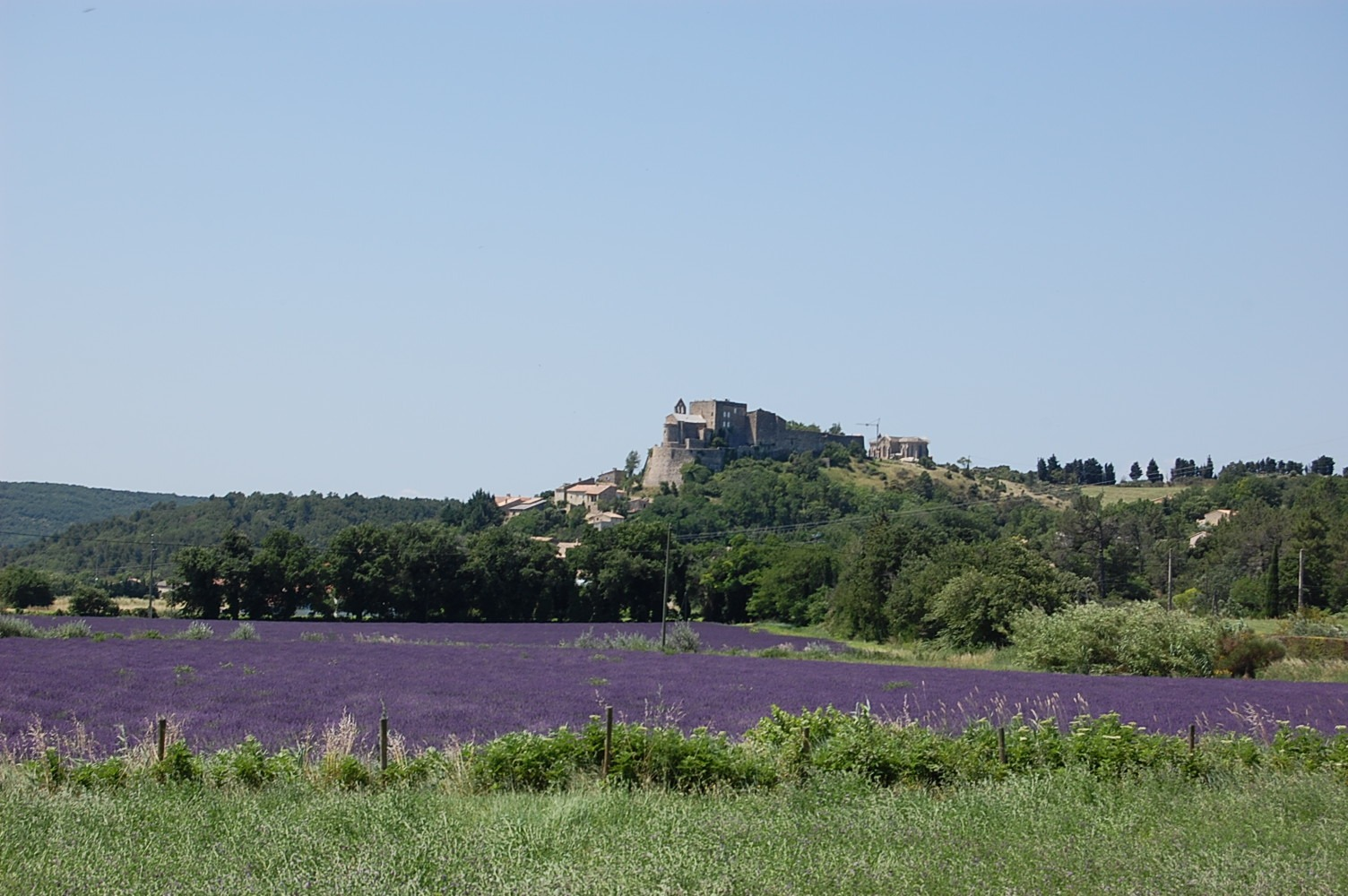 Self guided bike tour on the Lavender Route of Provence