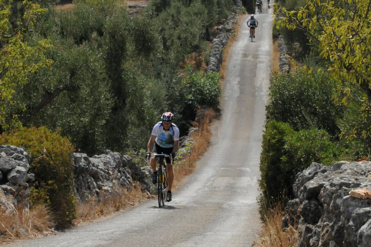 Self guided cycling tour through Puglia with Pure Adventures.