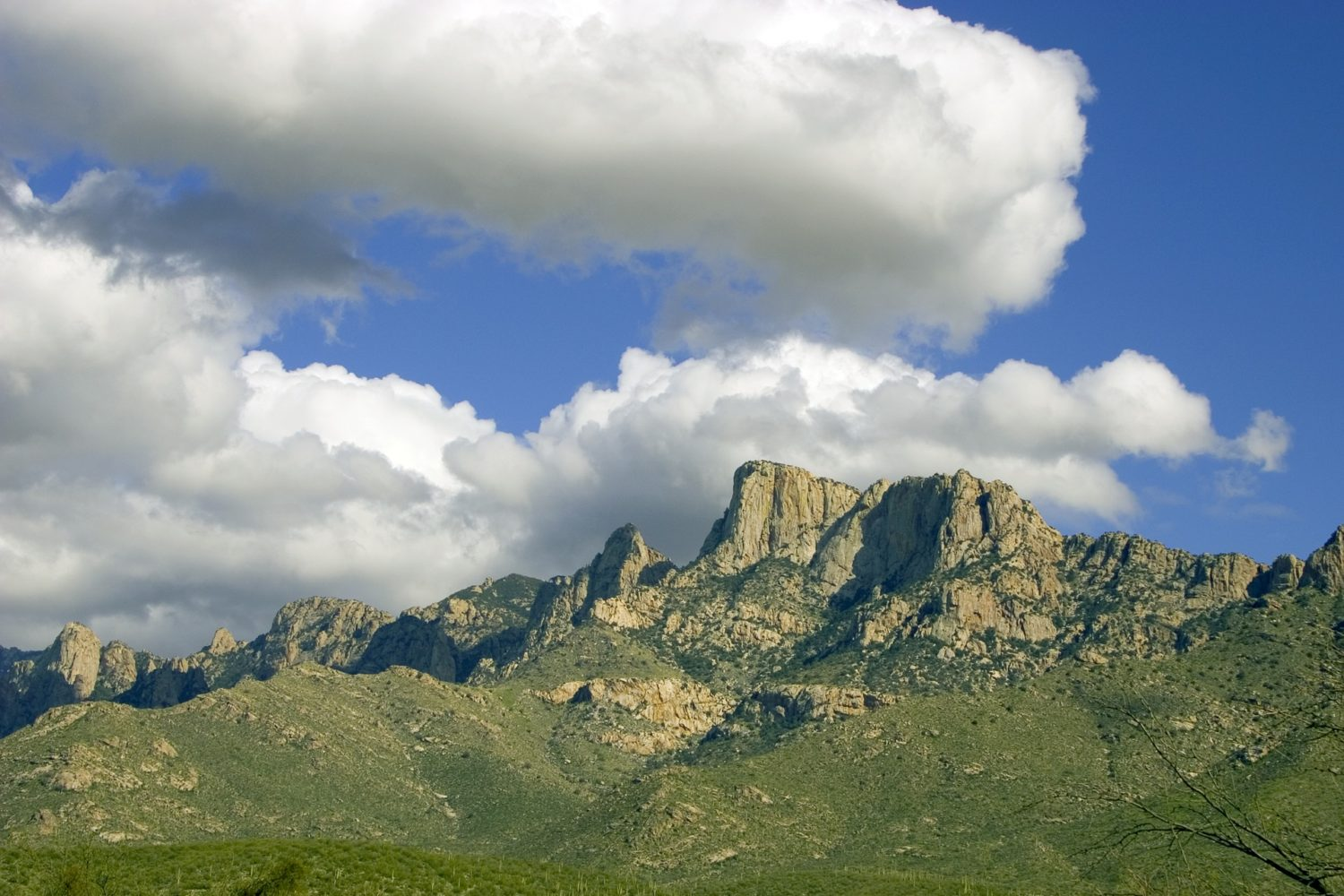 The towering Catalina Mountains are your backdrop in Tucson