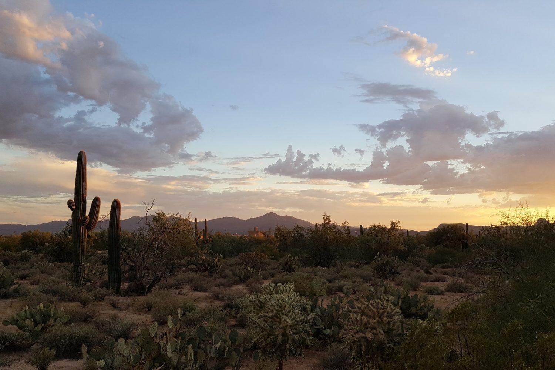 Desert landscapes and soft desert light are yours to enjoy!